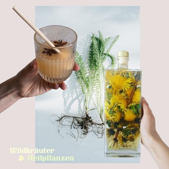 Wildkräuter und Heilpflanzen